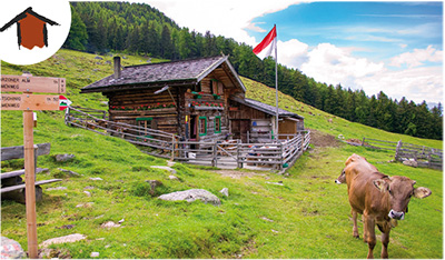 Freiberger Alm by Paul Peter Gasser c 1206 6900